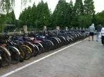 Bikes of Shanghai University